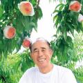 果樹への活用事例